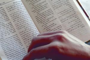 Bilinguale Bibel  (Foto: UBS)