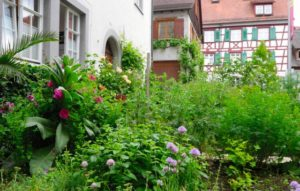 Bibel- und Kräutergarten